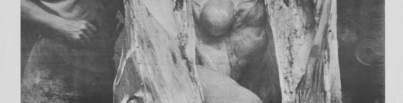 Hermann Nitsch. Das Orgien Mysterien Theater